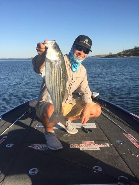 Striper would not leave the topwater alone today. Monsters.